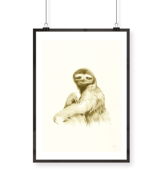 SLOTH II | pencil on paper
