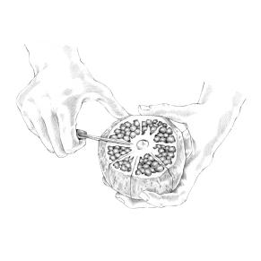 Tipps & Tricks Illustrationen | Granatapfel einschneiden